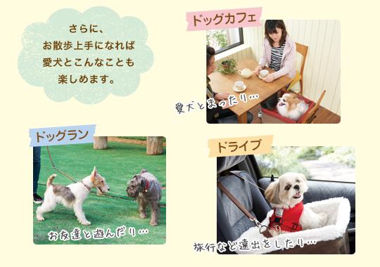 さらに、お散歩上手になれば愛犬とこんなことも楽しめます。