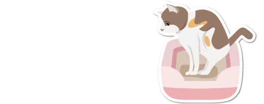 猫の腎臓病の原因