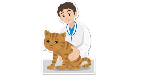 腎臓病の検査