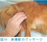 図10 麻痺肢のマッサージ