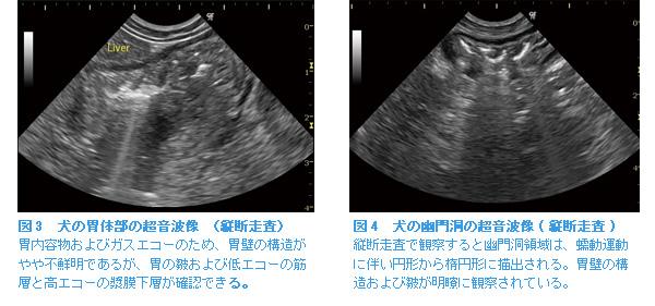 図3,図4
