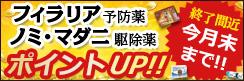もうすぐ終了!~5/31(金)のポイントアップ商品をPickup◆フィラリア用薬・ノミマダニ駆除薬◆