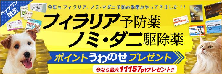 フィラリア予防薬、ノミ・マダニ駆除薬キャンペーン