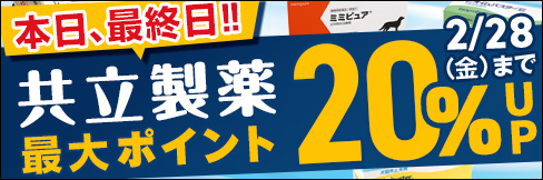 更に4品目追加!\最大20%ポイントUP!/【共立製薬ポイントアップキャンペーン】は2/28(金)まで!!
