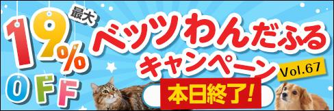 \最大19%OFF!/商品点数210点以上!【ベッツわんだふるキャンペーン vol.67】