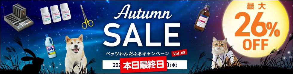 【オータムセール】最大26%OFF!セール対象品850点以上!ベッツわんだふるキャンペーンVol.68開催中!!