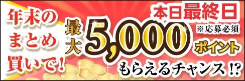 【年末まとめ買いキャンペーン】WEB限定! 最大5,000ポイントもらえるチャンス!!