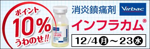 【Virbacインフラカムキャンペーン】ポイント10%うわのせ!~12/23(水)まで!!