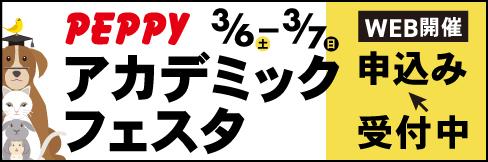 第8回アカデミックフェスタ2021