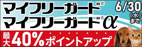 【マイフリーガード・マイフリーガードαキャンペーン】最大40%ポイントUP!~6/30(水)まで