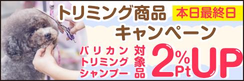 \2%ポイントUP!/【トリミング商品キャンペーン】~4/30(金)まで!!