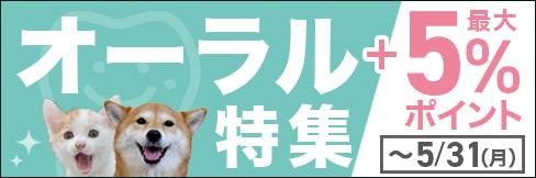 \最大5%ポイントUP!/【オーラル特集】歯磨きからスケーラーまでお買い得!! ~5/31(月)まで。
