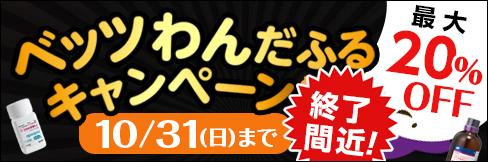 \最大20%OFF/【ベッツわんだふるキャンペーン vol.77】商品点数920点以上! 〜10/31(日)まで!!