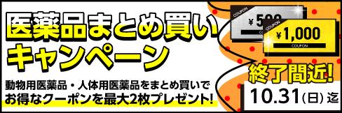 \お得なクーポンが最大2枚貰える!/【医薬品まとめ買いキャンペーン】〜10/31(日)まで!!