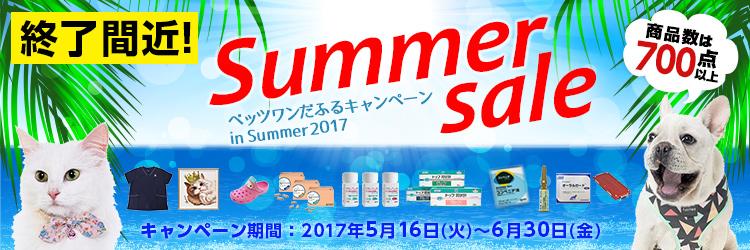 ベッツワンだふるキャンペーン in Summer2017
