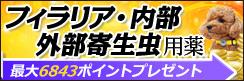 最大6,843ポイントプレゼント☆2018年 フィラリア予防薬、ノミ・マダニ駆除薬キャンペーン
