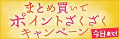 ★5日間限定★ポイント最大4%うわのせ!!~梅雨をぶっとばセール!! まとめ買いポイントざくざくキャンペーン!!~