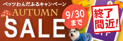 ★最大37%OFF!! 商品点数は350点以上★オータムセール~ベッツわんだふるキャンペーン vol.52~