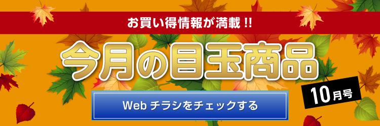 Webチラシ「今月の目玉商品 ~10月号~」発刊♪今月は、大好評開催中の「ベッツわんだふるキャンペーン Vol.53」より医薬品をピックアップ!