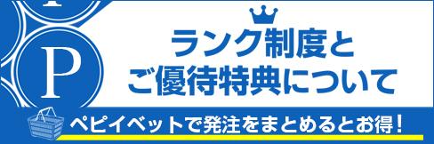 ランク更新間近! 2/1(月)はランク更新日!!【ランク制度&ご優待特典について】