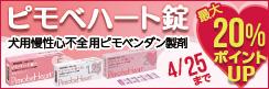 最大20%ポイントUP!犬用慢性心不全ピモベンダン製剤「ピモベハート」キャンペーン!!