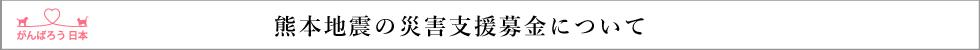 熊本地震の災害支援募金について